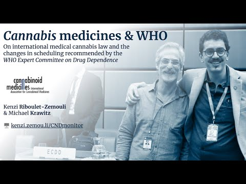 Understand WHO medical cannabis recommendations (2020)
