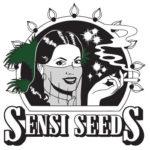 Partner des Forums für Hanfmedizin: Sensi Seeds, Lieferer für das niederländische Medizinalhanfprogramm