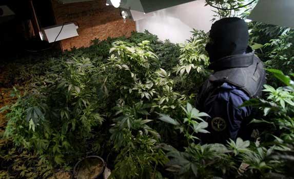 Drogenkrieg in Mexiko